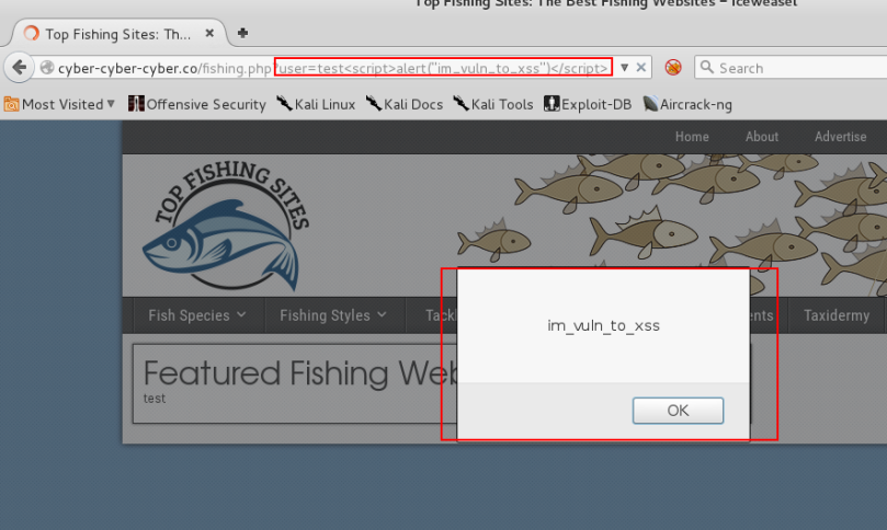 screenshot_xss_1